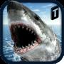 icon Crazy Shark 3D Sim